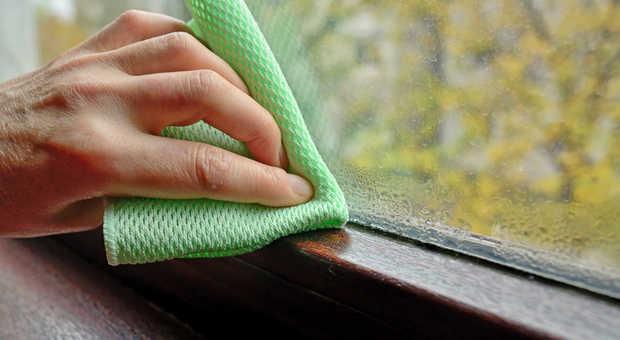 Fabulous Schimmel am Fenster entfernen und vorbeugen - Die besten Tipps VQ82